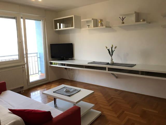 Beautiful calm apartment ZAGREB