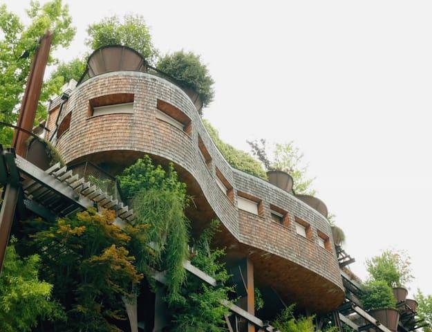 TREEHOUSE LOFT - 25 VERDE! Home among the Trees