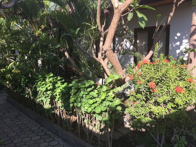Scuba Tribe Bali Tulamben Room 4 (3 persons)