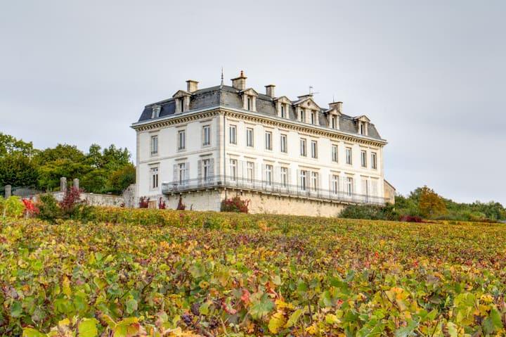 Suite au Château Clos des Ducs