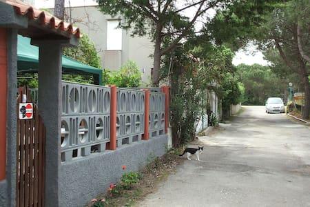Casa Vacanza Golfo dell'Asinara - Centro Commerciale - Byt