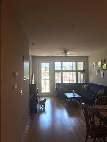 Spacious Uptown Condo Walking Distance to Uptown - Charlotte - Kondominium
