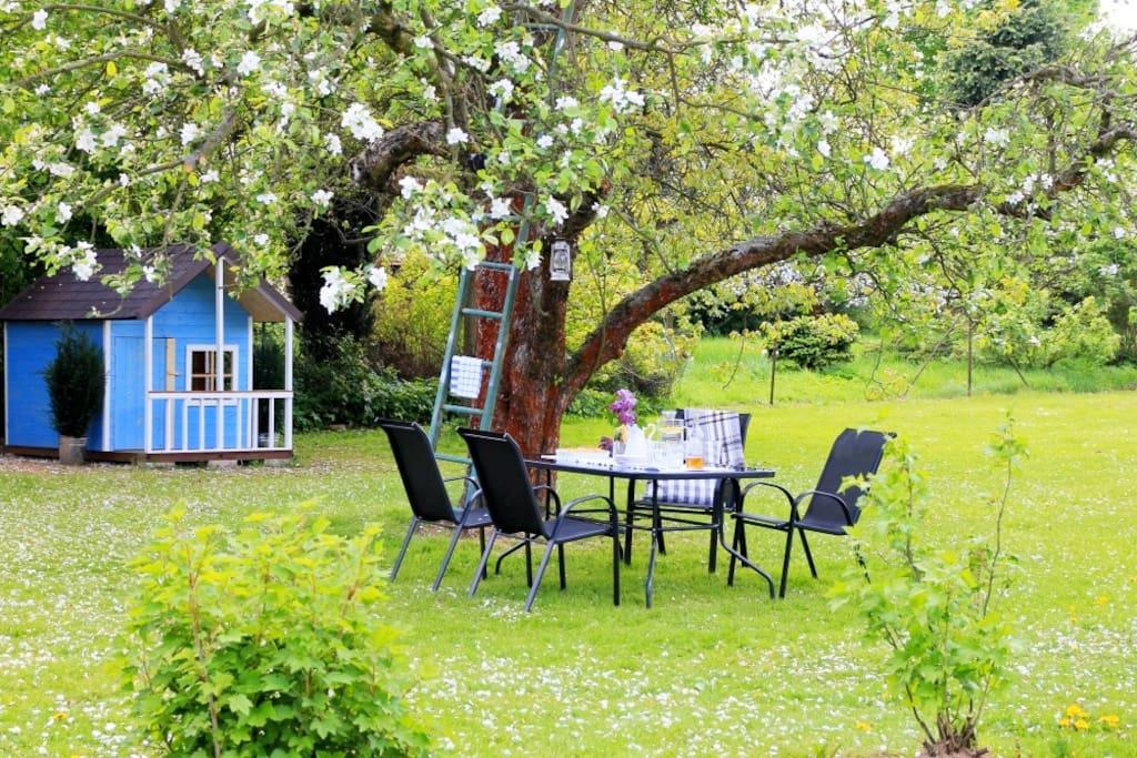 Relax pod jabloní