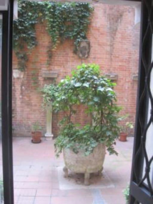 courtyard wheel