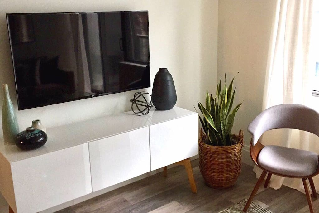 TV and credenza