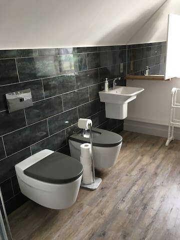 Luxury bathroom including bidet