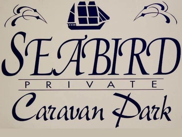 Seabird 'Peace of Paradise'