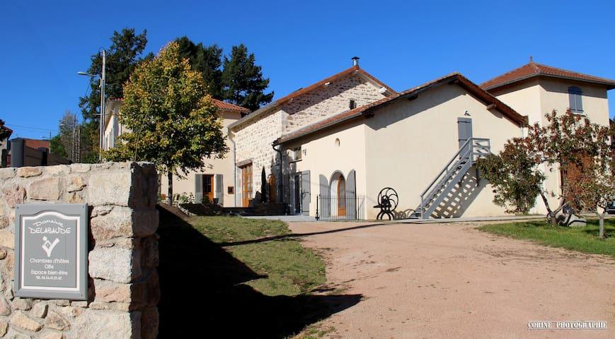DOMAINE DELABAUDE - Saint-André-d'Apchon - Huis