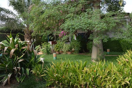Maison Baobab - Single Bedroom