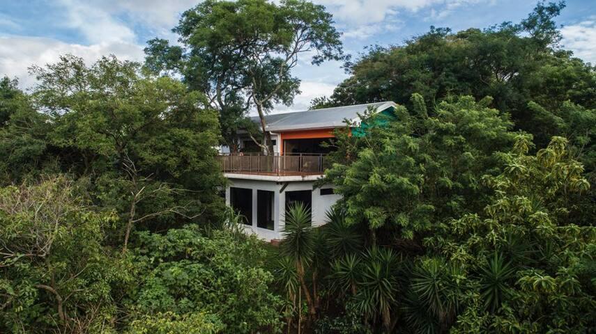 Patacaliente House - El Tigrillo