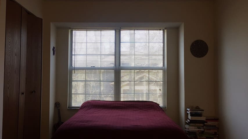 Spacious room with great amenities near campus - Ann Arbor - Appartement