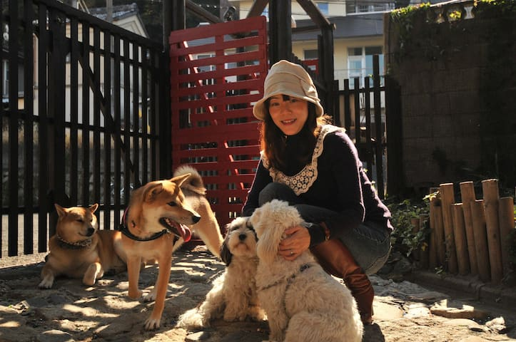 Cozy Japanese style living and lively dog cafe!