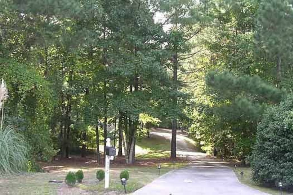 This is the long paved driveway leading up to the serene and woodsy property.