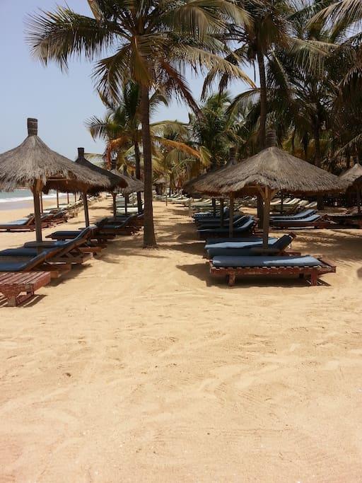 La plage et les bains de soleil de la résidence