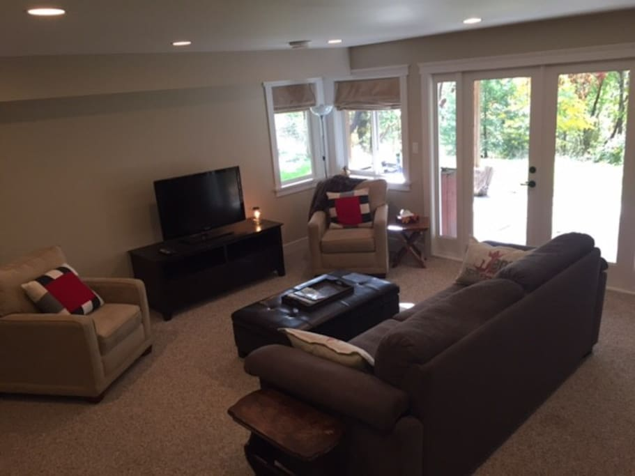 Large living area with pull out couch.