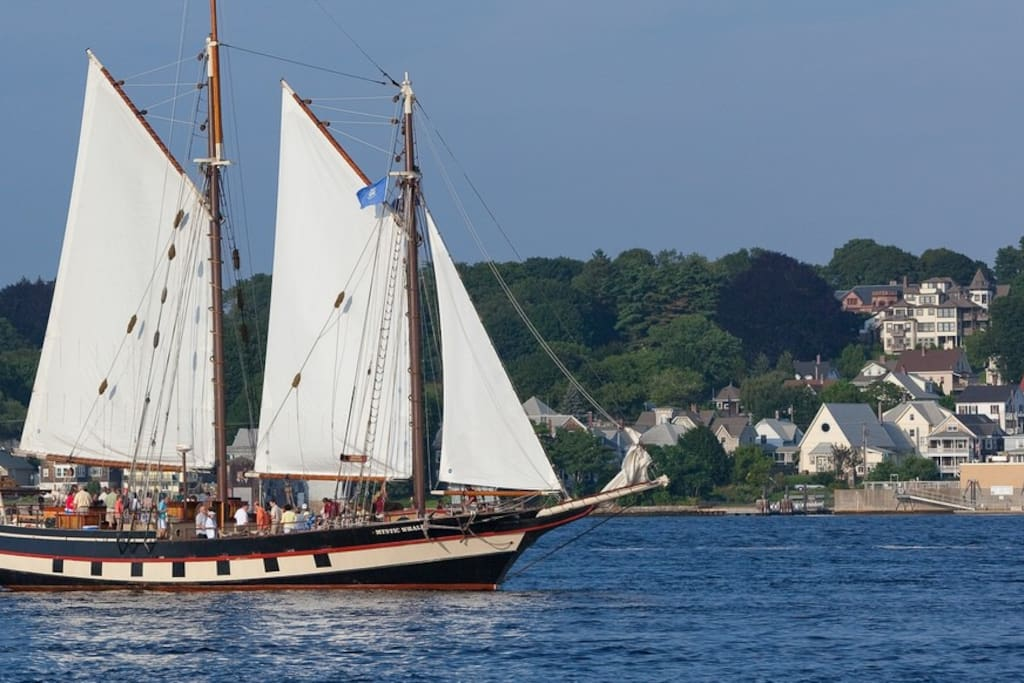 Haul on a halyard, bask in the sun or watch the scenic coast slip by. Escape aboard the Mystic Whaler