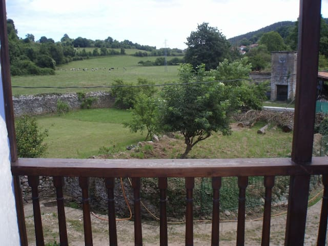 View from one of the bedroms.This is a balcony
