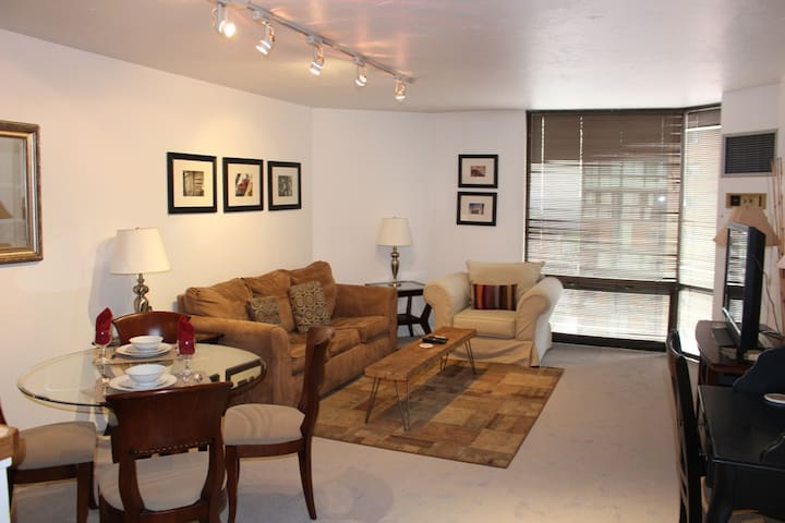 DOWNTOWN DENVER FURNISHED CONDO THE BARCLAY TOWERS