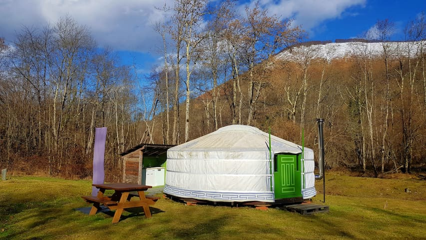 The yurt, picnic table and outdoor kitchen.