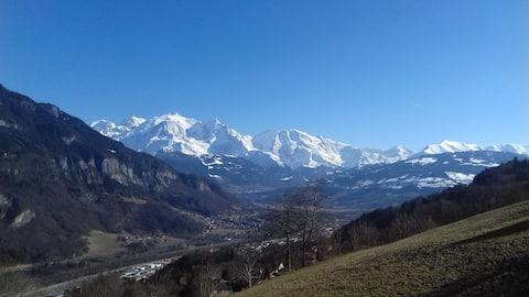 Très beau F2 avec terrasse face au Mt.Blanc