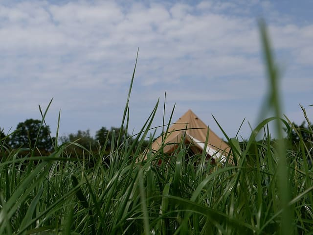 Bell Tent Glamping - Calico