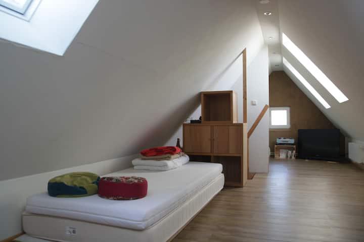 Dachwohnung mit Spitzboden in Uni Nähe