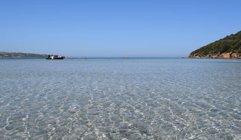 La mer à Pinarellu
