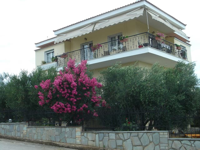 Luxury apartment among olive trees
