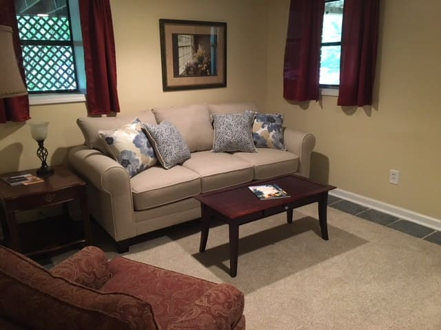 The sitting room in Suite 5 with the pullout couch.
