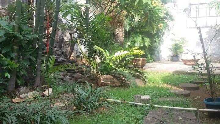 Oasis in West of Jakarta