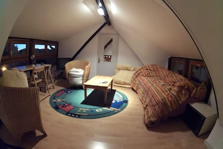 Cool Mezzanine Room at shared flat in Downtown. - Mulhouse - Lakás