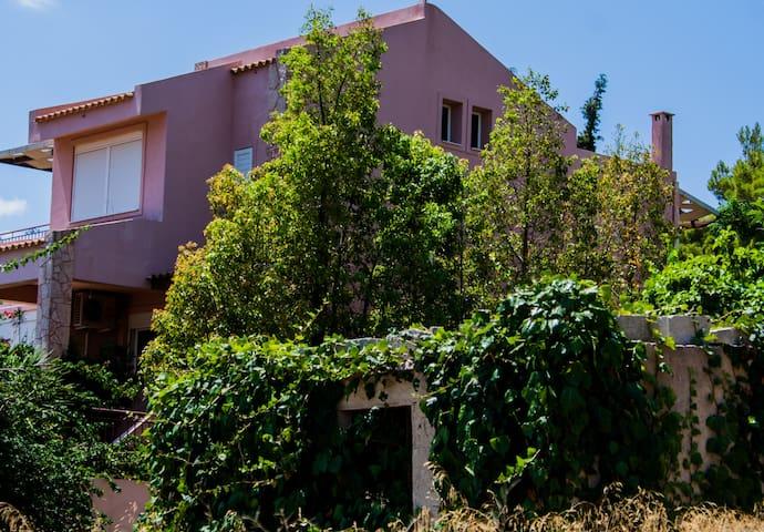 Summer Home - Athens Riviera Lagonisi - Kalyvia Thorikou - House