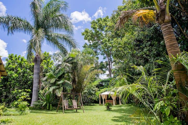 Lush Gardens | WiFi | Steps to Mall | Generator