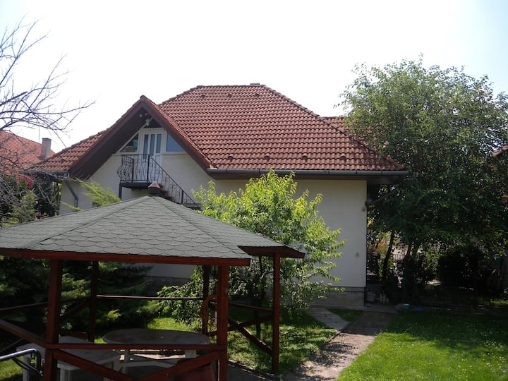 Apt for 9 persons with WLAN in Siófok R16531