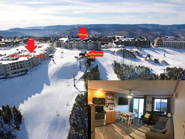 Ski In/Out Village, Mnt. Ldge 1st fl,Mnt. Views,