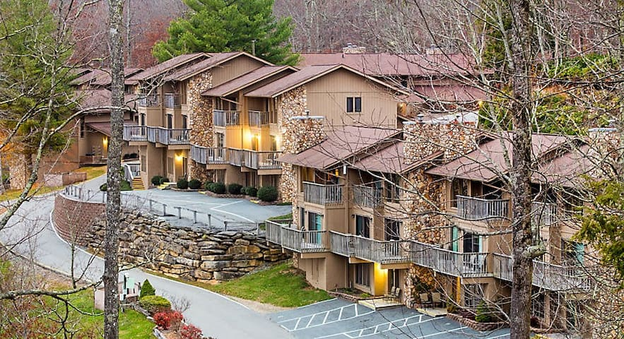BLUE RIDGE VILLAGE - SPACIOUS 1 BEDROOM SUITE