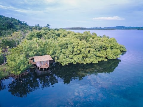 Secluded Coconut Cabin, bioluminescence and coral!