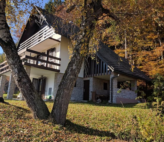 Country house located next the to ski resort. - Sv. Lenart