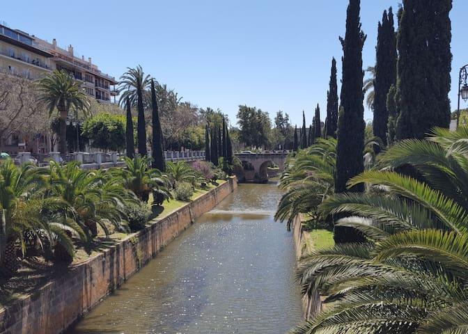 apartamento en el centro de Palma de Mallorca