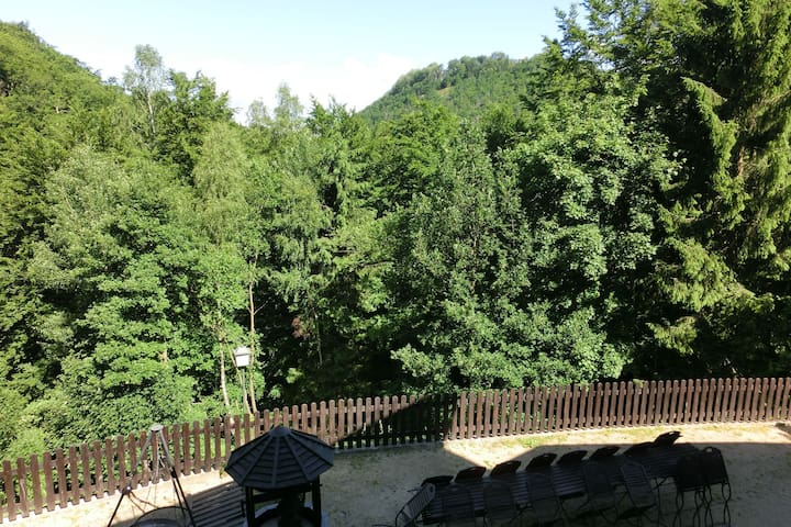 Rustic Holiday Home in Bad Harzburg with Private Garden