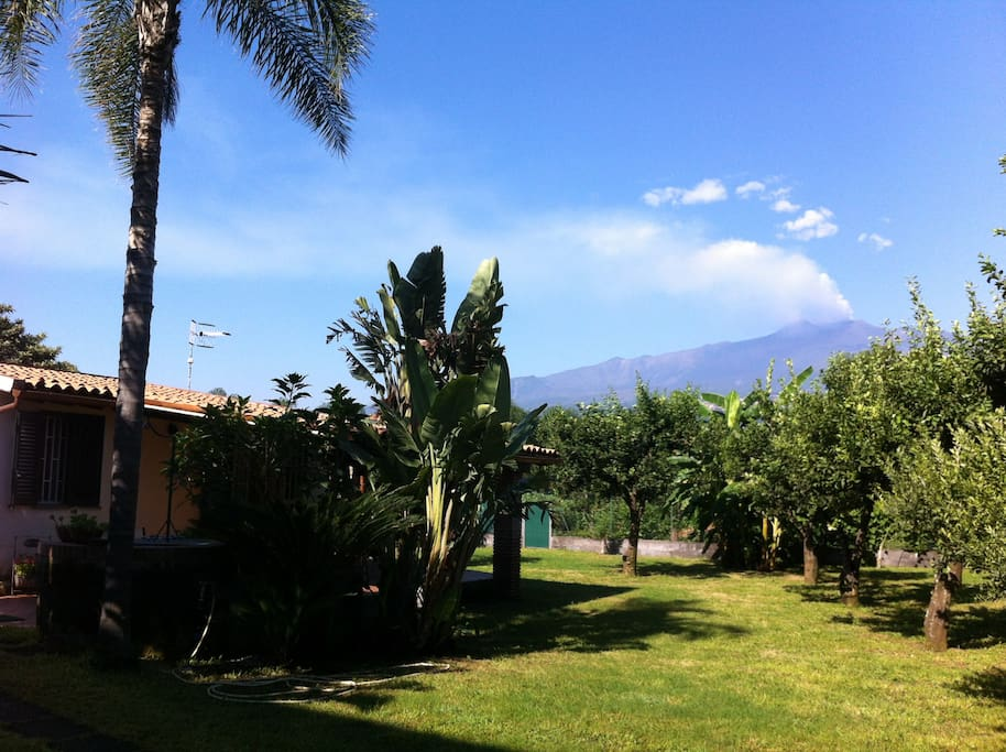 A view of Mt. Etna from the garden.