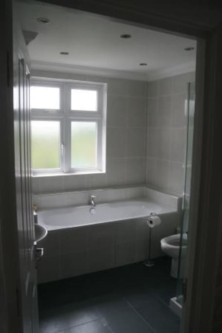 Guest bathroom at the back of the house on the first floor with power shower/cubicle