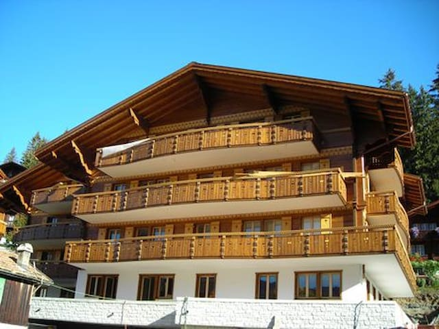 Apartment Brunnen top floor - Grindelwald - Daire
