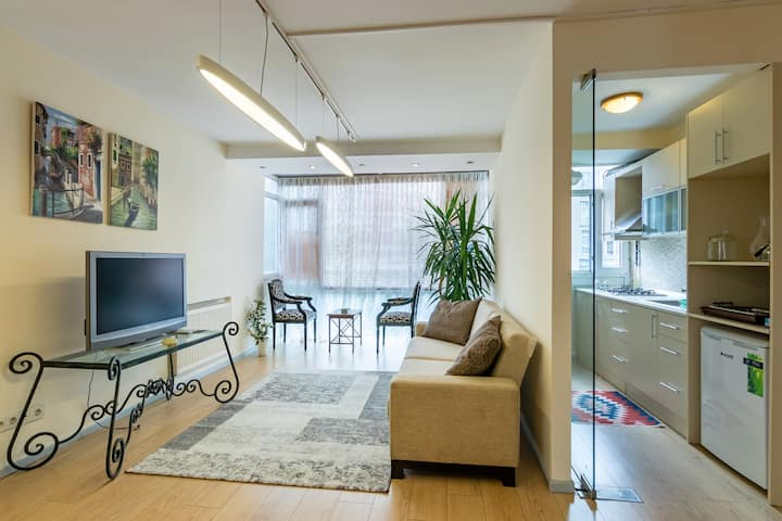 Newly renovated 2-bedroom apt next to Akmerkez