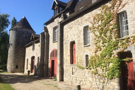 Charming Chateau in Burgundy - La Chapelle-sur-Oreuse - Schloss