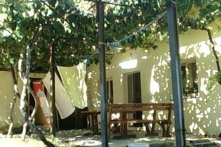 Dani room to lov in a small grad :) - Danilovgrad - Casa