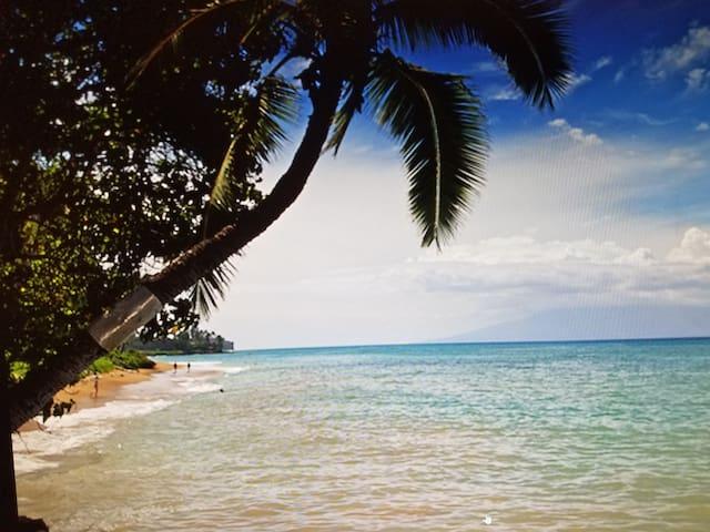 West Maui Pohailani Resort - Lahaina