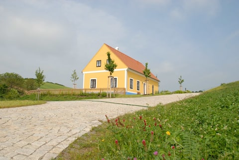 Beautiful house in Valtice