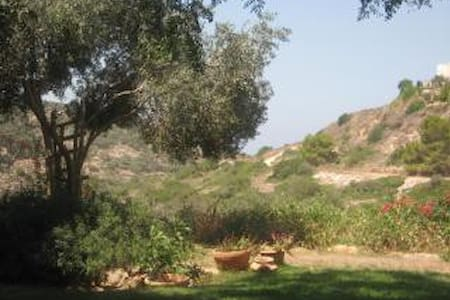 Holiday Home w/Separate Entry, kosher b&b optional - Zikhron Ya'akov - Apartemen
