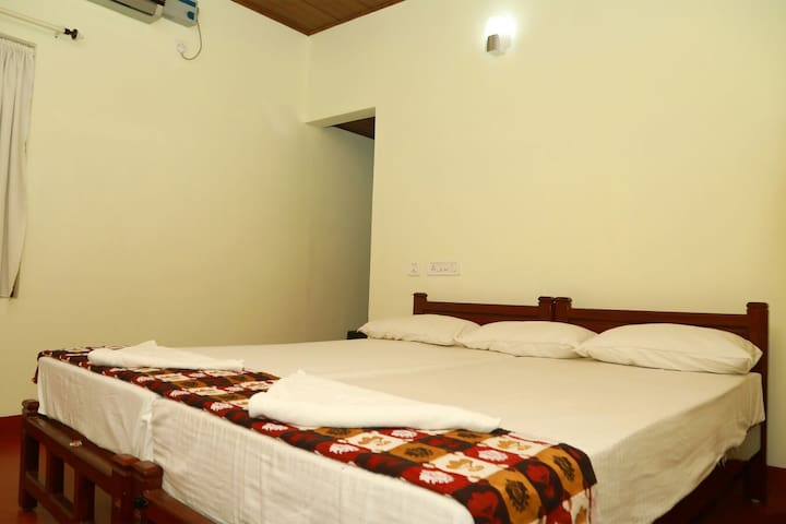 Experience with Musical Family Homestay @ Marari